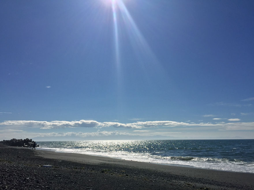 静岡市内の海岸