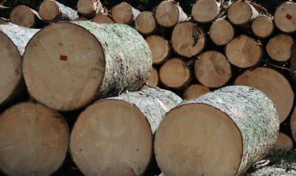溶射事例:木製品製造(一般製材)